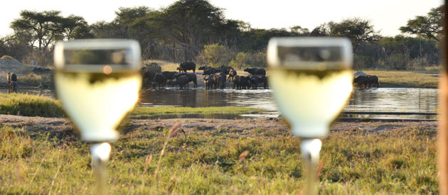 THE HIDE - HWANGE NATIONAL PARK